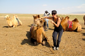 Mein Kamel...:)