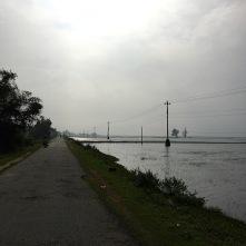Die Fahrt führt uns vorbei an unzähligen Reisfeldern