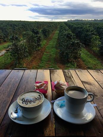 Kaffee vor Kaffeeplantage :-)