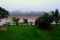 Morgenstimmung am Kinabatangan River