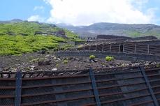 Aufgrund des Steinschlags gibt es an besonders exponierten Stellen Schutzmauern
