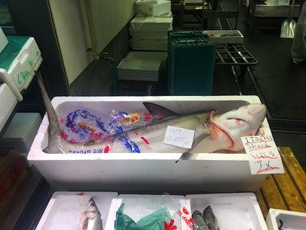 trauriger Anblick auf dem Fischmarkt