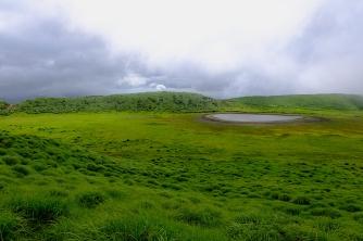 graue Nebelsuppe trifft auf sattgrüne Wiesen