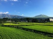 Blick zum Mt. Aso