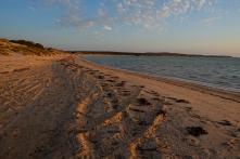 Sonnenuntergang über der Sharkbay
