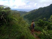 Blick über Rarotonga