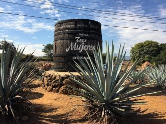 Tres Mujeres Destillerie