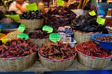 In und rund um den Mercado 20 Noviembre