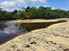 Río Perezoso