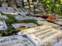 """""""La Virgen de los Sicarios"""" - Die Jungrau der Killer. Ein Ort wo einst Pablo Escobar um Hilfe gebeten hat und wo auch heute noch Wünsche angebracht werden."""