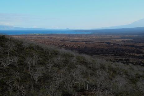 Blick über die Insel Isabela
