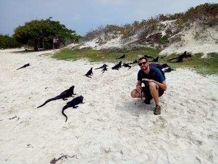 Meerechsen am Galapagos Beach